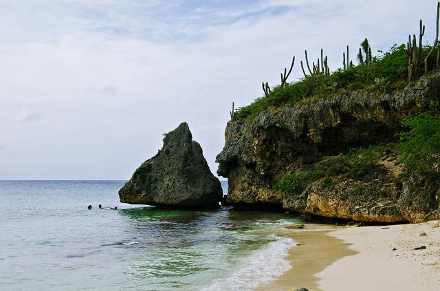 American: Phoenix – Curacao. $276 (Basic Economy) / $336 (Regular Economy). Roundtrip, including all Taxes