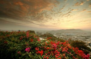 Copa: Portland – Guayaquil, Ecuador. $371. Roundtrip, including all Taxes