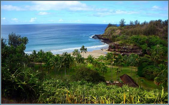 American: New York – Kauai, Hawaii (and vice versa). $447. Roundtrip, including all Taxes