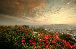 Copa: Portland – Guayaquil, Ecuador. $387. Roundtrip, including all Taxes