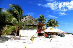 American: Los Angeles – Cozumel, Mexico. $288 (Basic Economy) / $318 (Regular Economy). Roundtrip, including all Taxes