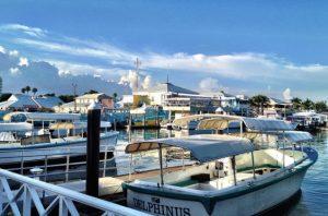 American: Los Angeles – Freeport, Bahamas. $320 (Basic Economy) / $350 (Regular Economy). Roundtrip, including all Taxes