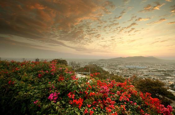 Copa: San Francisco – Guayaquil, Ecuador. $462. Roundtrip, including all Taxes