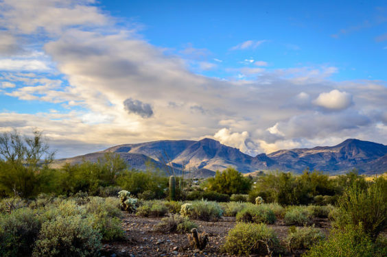United: Washington D.C. – Phoenix (and vice versa) $236. Roundtrip, including all Taxes