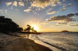 jetBlue: New York – Pointe-a-Pitre, Guadeloupe. $258 (Basic Economy) / $288 (Regular Economy). Roundtrip, including all Taxes