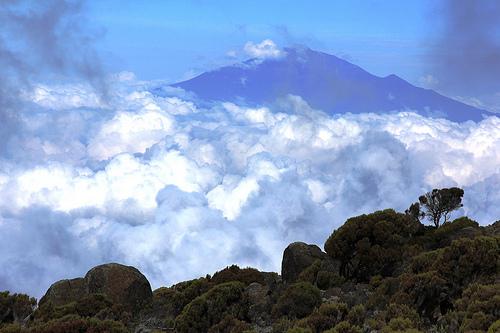 Qatar Airways: San Francisco – Kilimanjaro, Tanzania. $822. Roundtrip, including all Taxes