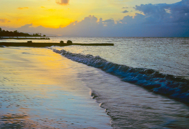 American: New York – Montego Bay, Jamaica. $260. Roundtrip, including all Taxes