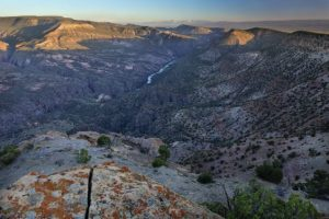 American: New York – Montrose, Colorado (and vice versa). $226. Roundtrip, including all Taxes