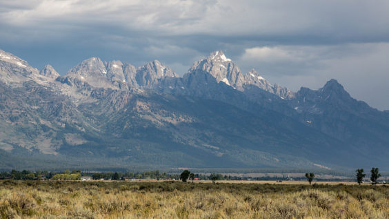 American: New York – Jackson Hole, Wyoming (and vice versa). $259. Roundtrip, including all Taxes