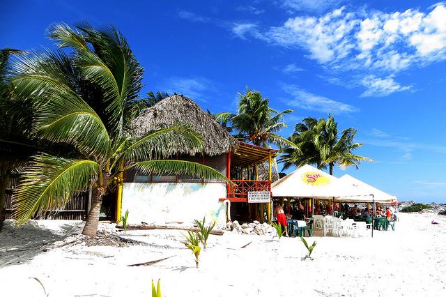 United: Phoenix – Cozumel, Mexico. $283 (Basic Economy) / $363 (Regular Economy). Roundtrip, including all Taxes